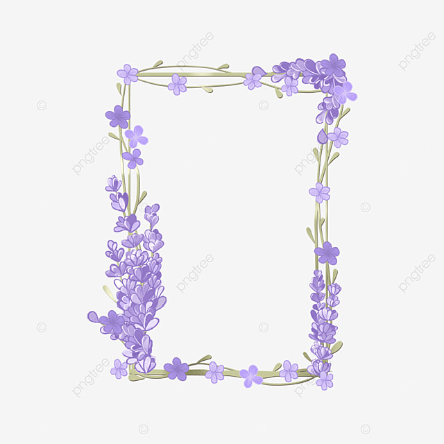 lavender border purple vine