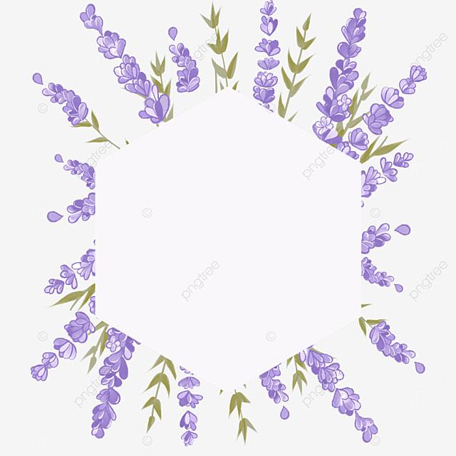 lavender border rhombus border