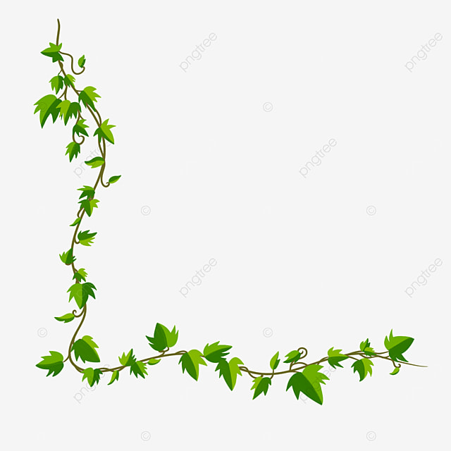 long strip of ivy clipart border