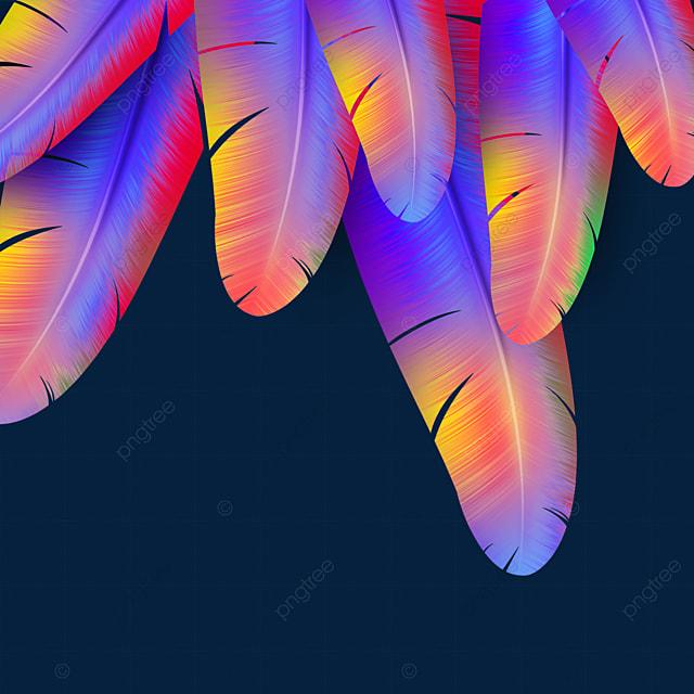 orange blue feather texture border