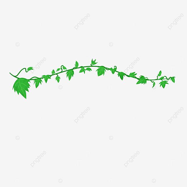 straight green ivy clip art
