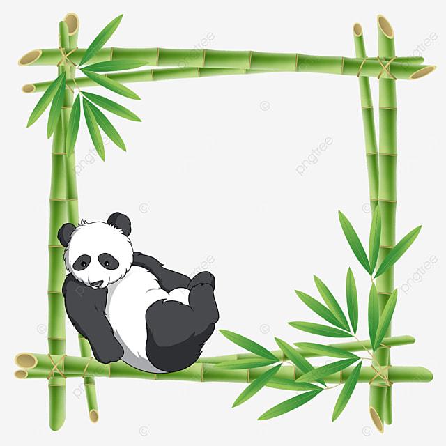 panda bamboo flower border leaning on bamboo