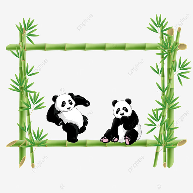 square panda bamboo floral border