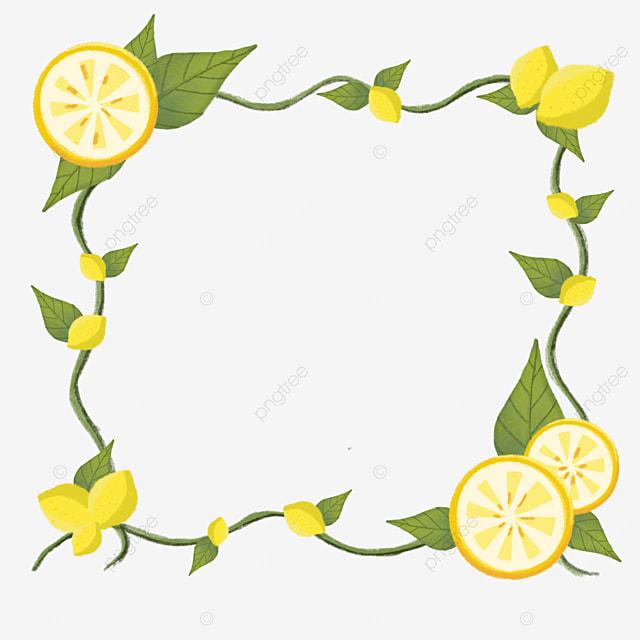 square yellow lemon border