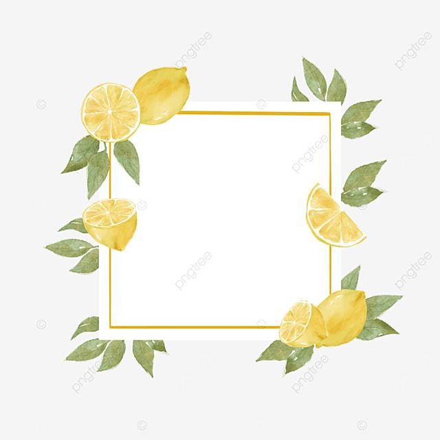 creative lemon border rectangle border