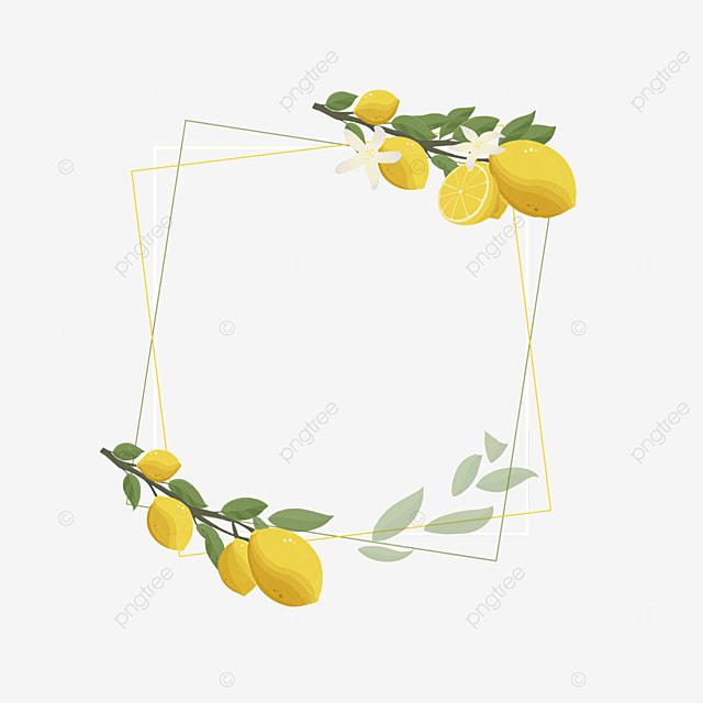 creative square lemon border