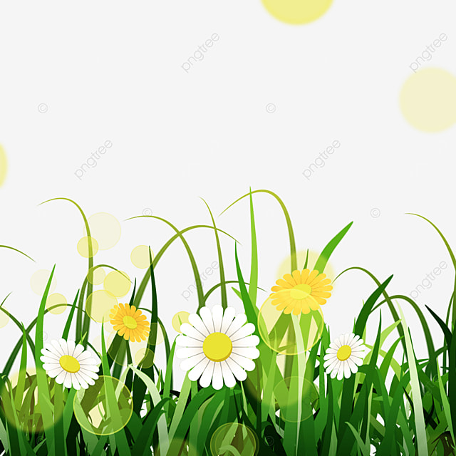 glare yellow flowers spring easter green meadow