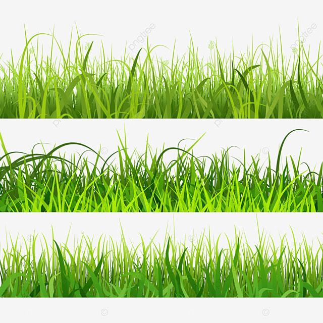green leaf spring easter green grass