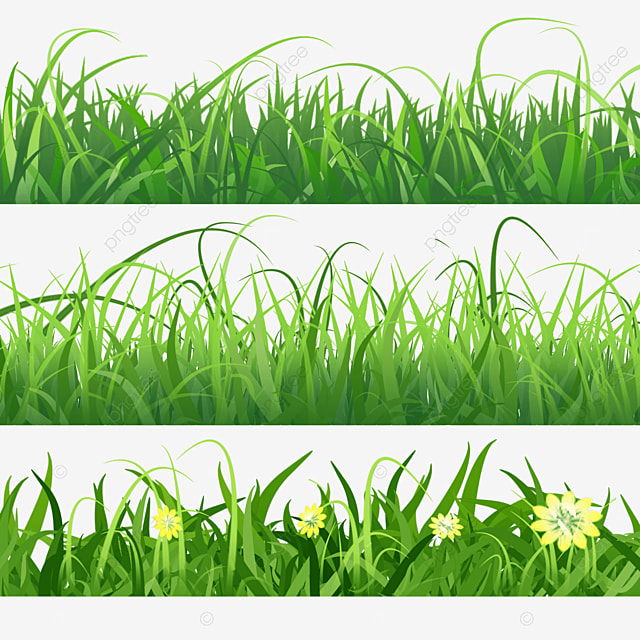 layered grass bushes spring easter green grass