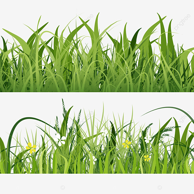 real grass spring easter green meadow