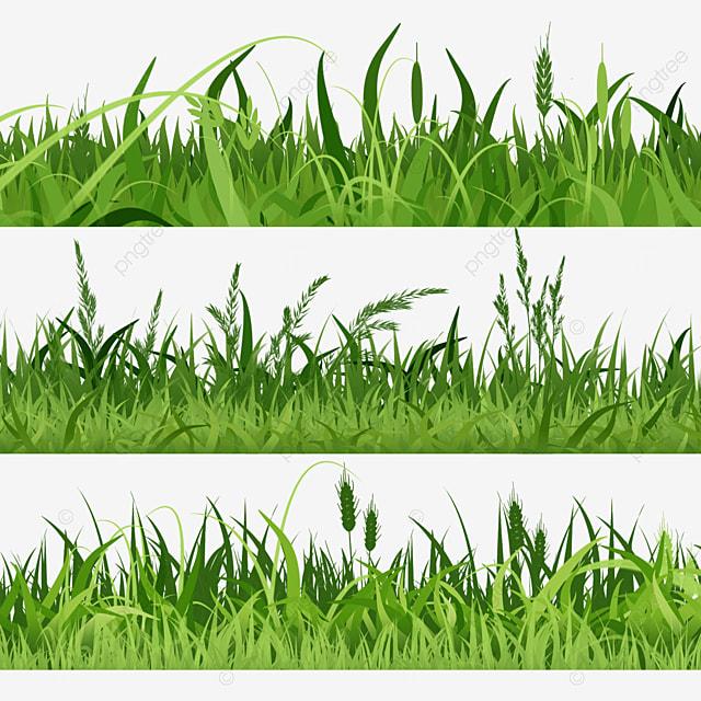 spring easter green grass bristlegrass