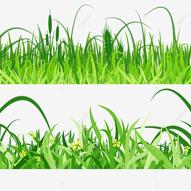 spring easter green grass grass illustration
