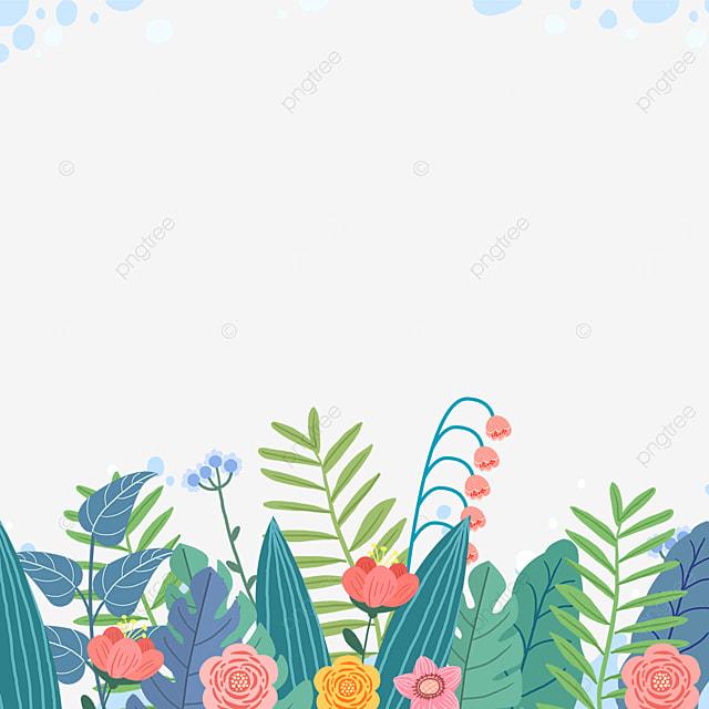 spring outdoor wildflower flowers
