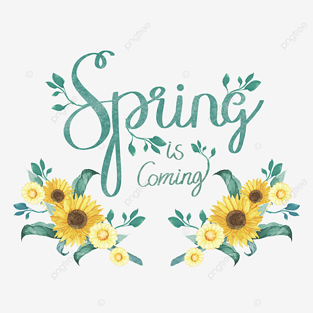 sunflower spring font svg