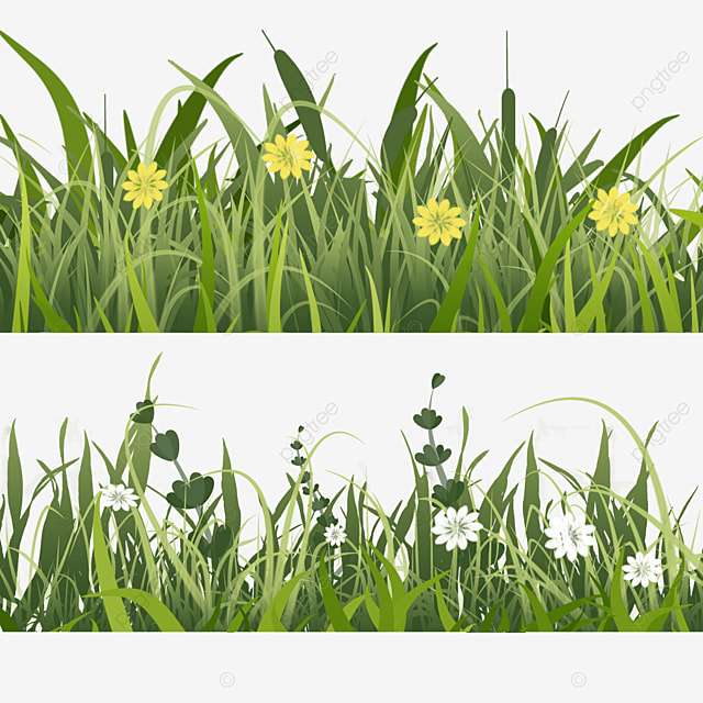 white flowers spring easter green meadow