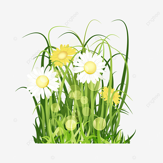 yellow and white flowers halo spring easter green meadow