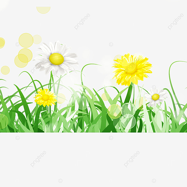 yellow and white flowers spring easter green meadow