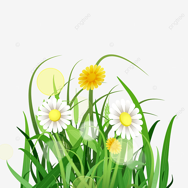 yellow halo and blooming flowers spring easter green meadow