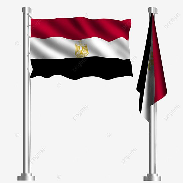 arabian saladin eagle waving egyptian flag