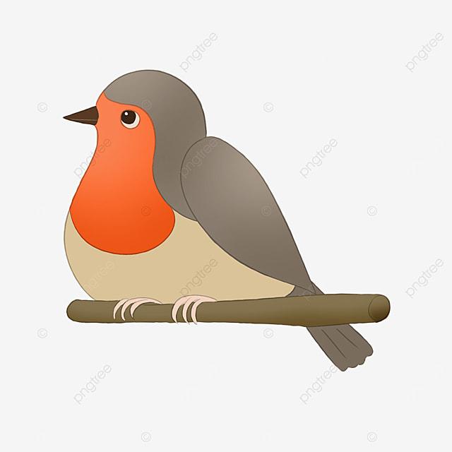 big belly card notification robin cute clipart