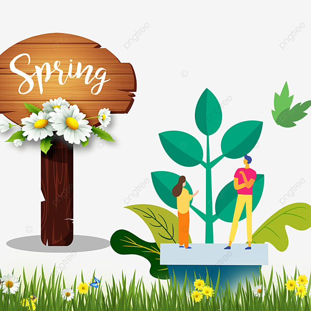 border spring flowers grass wood board