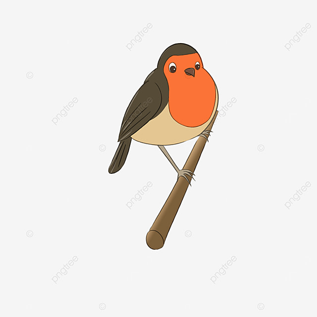 branch card notice robin red breasted clipart