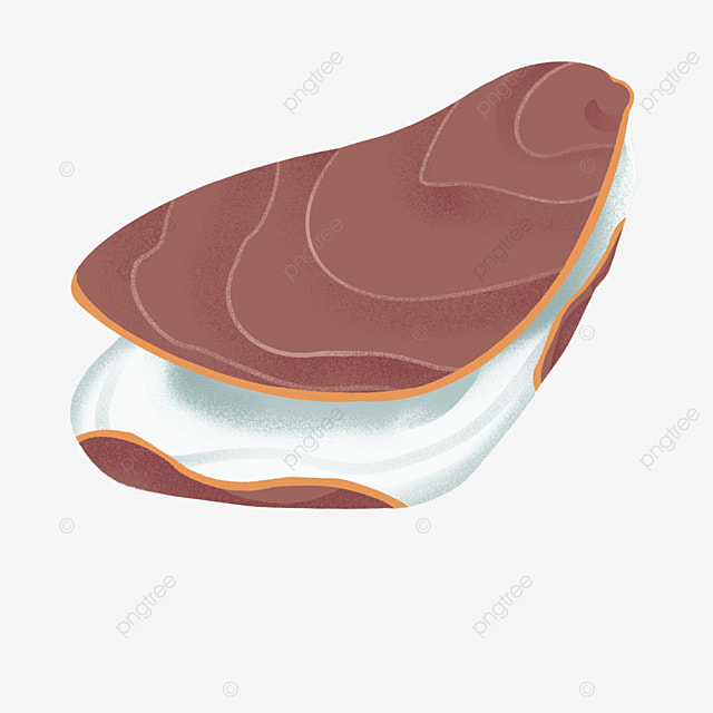 brown red shell oyster clip art