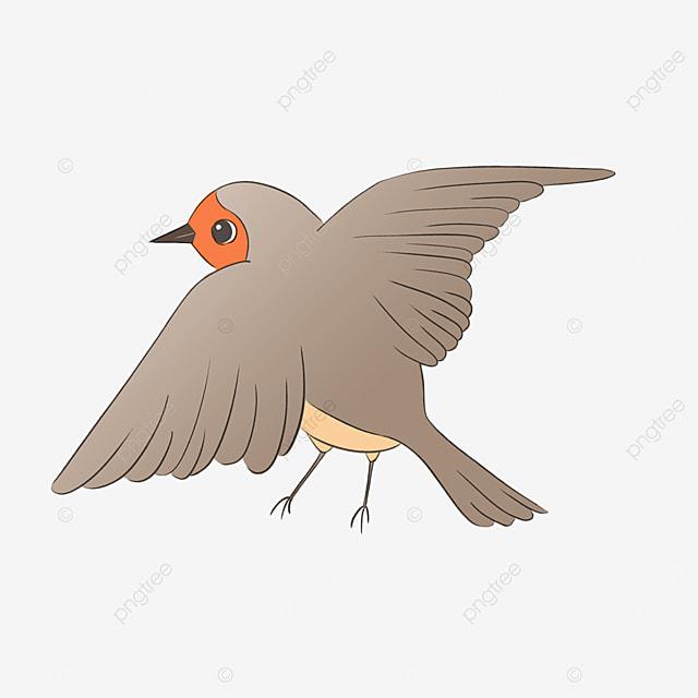 cartoon cute robin with wings spread clipart