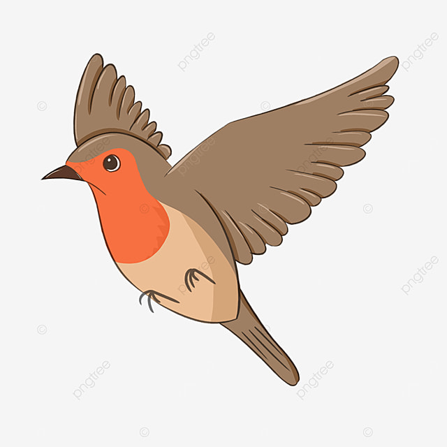 cartoon flying red breasted robin clipart