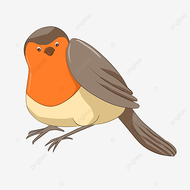 cartoon round bellied robin clipart