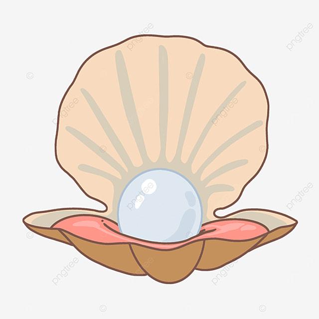 cartoon seashell oyster clipart