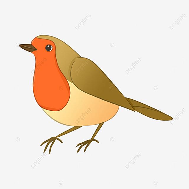 clip art robin red breasted cute
