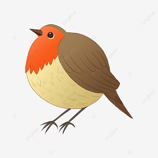 fat round cute clipart card notification bird