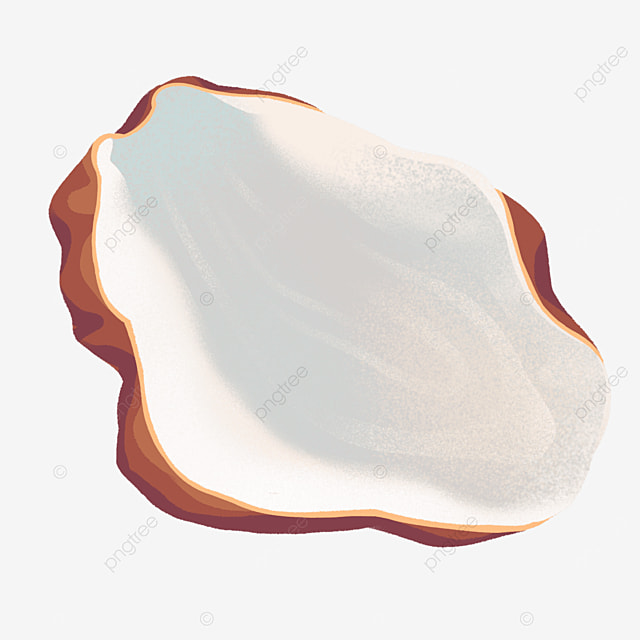 glossy shell oyster clip art