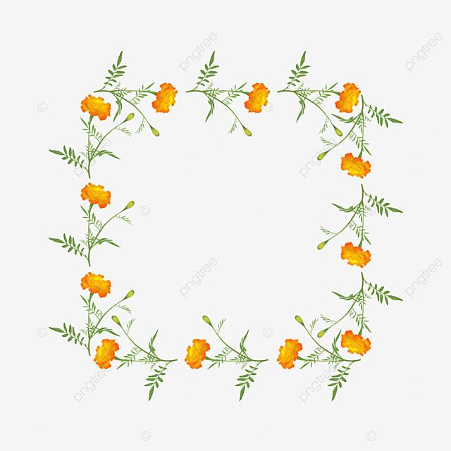 orange square flower branch border