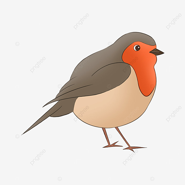 robin cute chubby red chest clipart