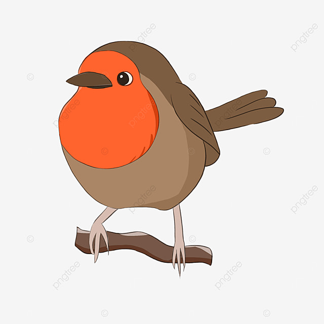 robin cute red breasted cartoon clipart