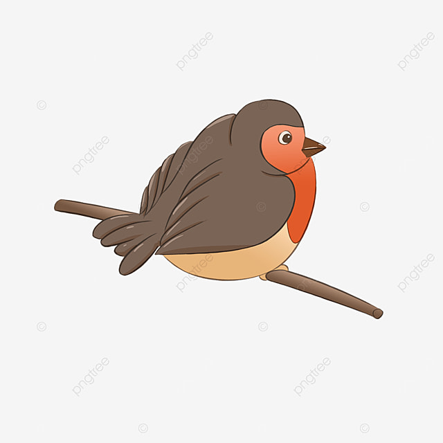 robin resting on a branch clipart