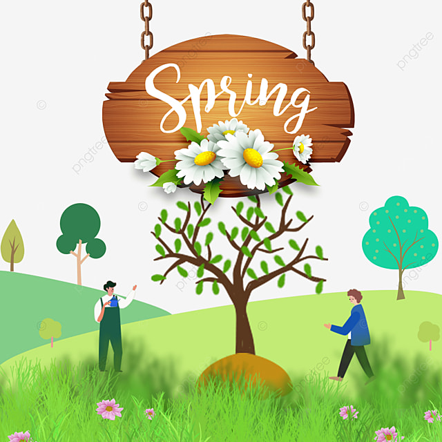 spring plant flowers and wood board border flower meadow