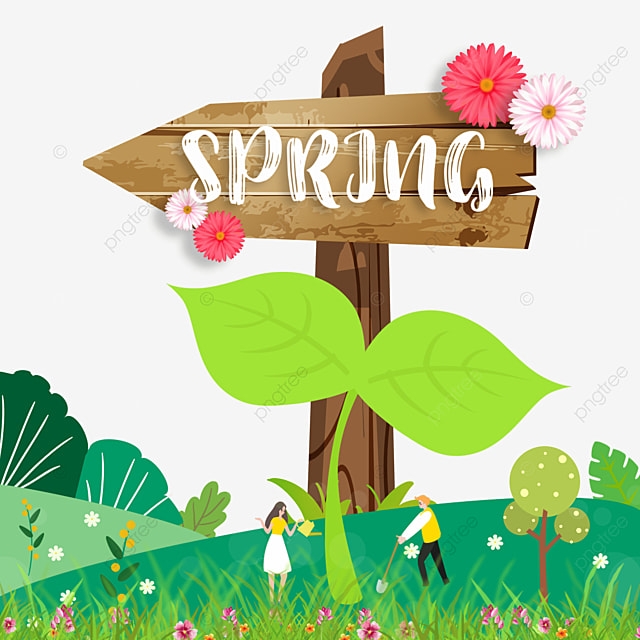 spring plant flowers and wood board floral border