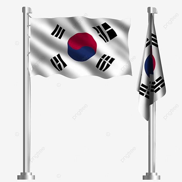 tai chi flag waving south korean flag