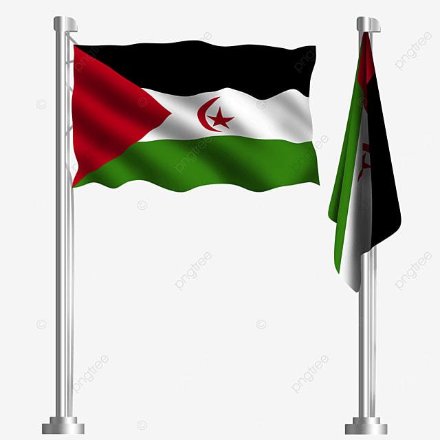 the flag of the arab salar democratic republic