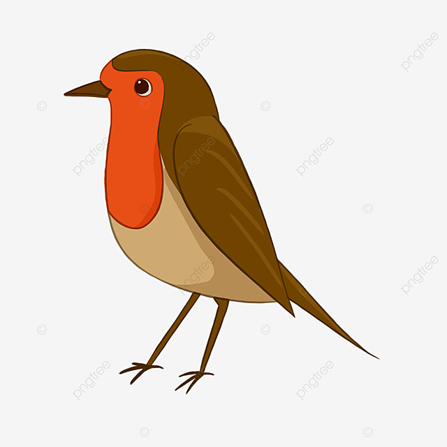 thin cartoon red breasted robin clipart