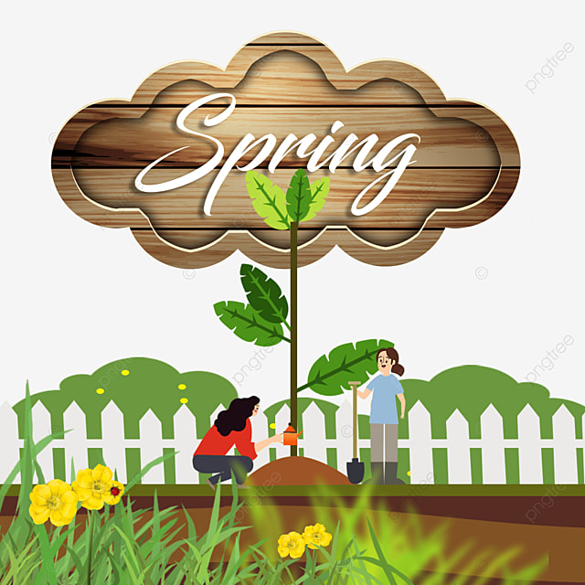 wooden board spring flowers and green flowers border