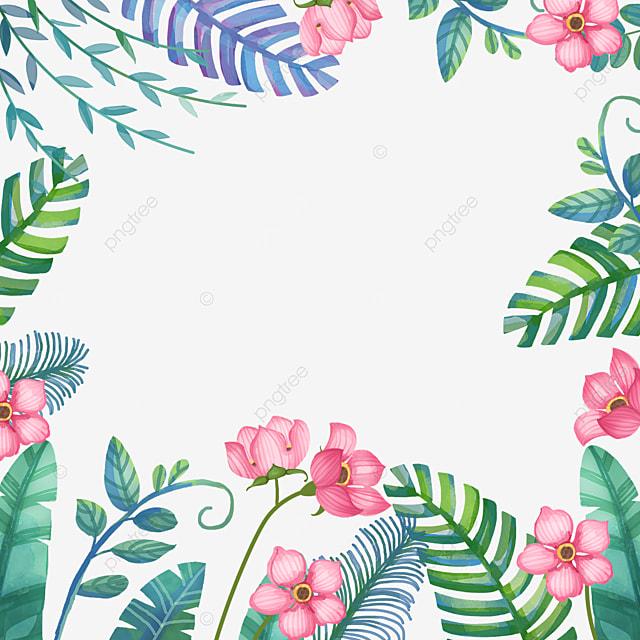spring winter jasmine full bloom flowers
