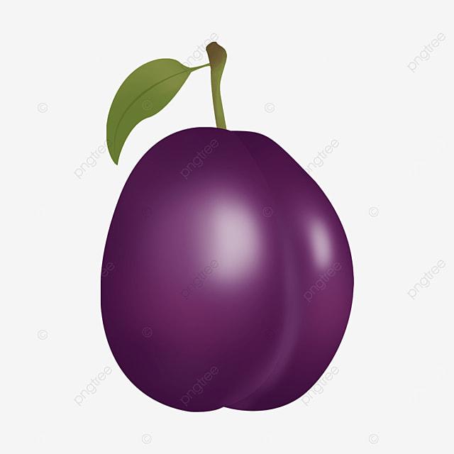 a conical purple plum clipart