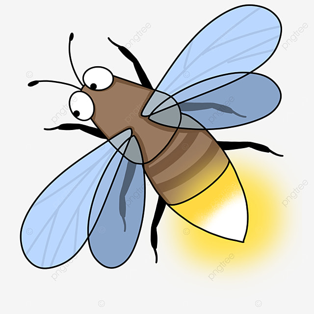 beneficial insect firefly clip art