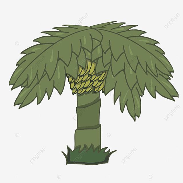 bushy banana tree clip art