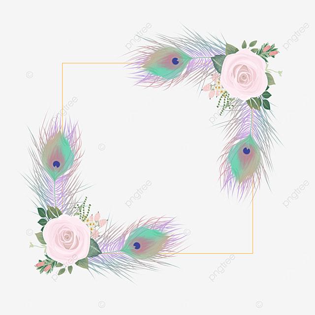colorful feather decorative border