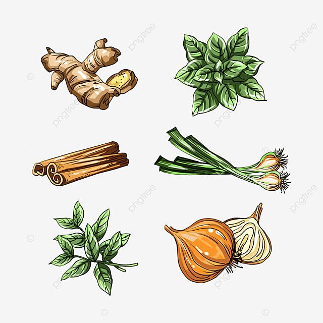 colorful herbs spice seasoning
